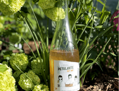What Are We Drinking Now? Petulante Pet Nat White